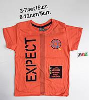 Подростковая трикотажная футболка для мальчика Expect 8-12 лет, цвет уточняйте при заказе, фото 1
