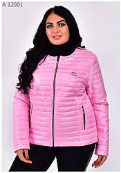 Весенние женские куртки пиджаки стильные размеры 42-68