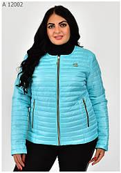 Модная женская куртка демисезонная размеры 42-68