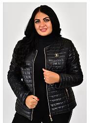 Короткая женская куртка демисезонная без капюшона размеры 42-68