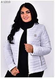 Красивая женская куртка демисезонная белая размеры 42-68