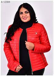 Куртки женские демисезонные короткие рамер 42-68