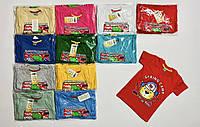 Дитяча трикотажна футболка для хлопчика Spring Camp розмір 1-4 роки, колір уточнюйте при замовленні