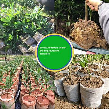 Биоразлагаемые нетканые мешки длявыращивания растений