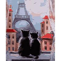 Картина по номерам Пара котиков, 40х50 см(VA-0902)