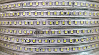 Светодиодная лента 220V 2835-120 IP 68 Синий PREMIUM, фото 1