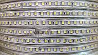 Светодиодная лента smd 2835/120 220В IP68 Ярко Белая 6000к, фото 1