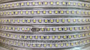 Светодиодная лента smd 2835/120 220В IP68 Тепло Белая 3000к