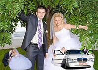 Свадебная съёмка фото и видео