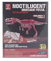 Розкопки динозаврів 2 види SKL11-223904