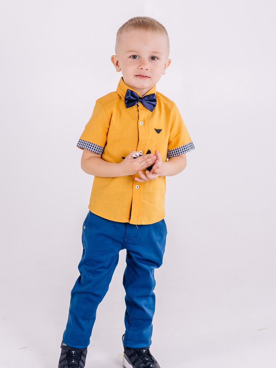 Синие брюки Polo для мальчика