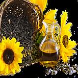 Масло растительное / масло подсолнечное, фото 2