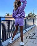 Женский стильный плюшевый костюм-тройка с шортами (Норма), фото 8