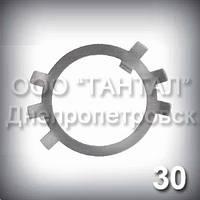 Шайба 30 оцинкована ГОСТ 11872-89 стопорная многолапчатая