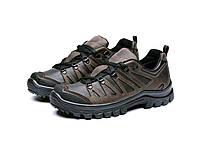 Жіночі трекінгові кросівки 225 шоколад, фото 1
