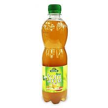 """Комбуча (Kombucha) Bio """"Зеленый чай"""", органический напиток 500 мл, BIO LINIE"""