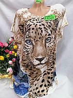 Жіноча трикотажна футболка Леопард розмір 52-54, колір уточнюйте при замовленні, фото 1