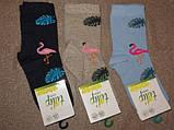 Набір 3 шт. Дитячі шкарпетки з бавовни з малюнком Bross, фото 2