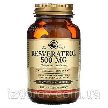 Solgar, Ресвератрол 500 мг, Resveratrol, 30 растительных капсул