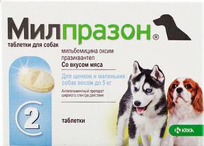 Таблетки Milprazon Мілпразон від гельмінтів для цуценят та собак малих порід  до 5 кг 1 табл