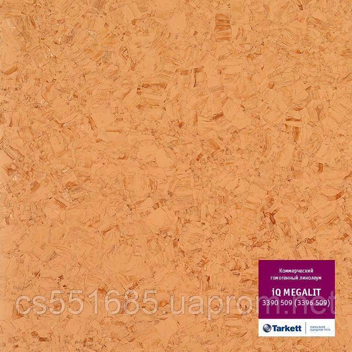 3390 509 (3396 509) - линолеум коммерческий гомогенный 34 кл, коллекция IQ Megalit (Мегалит) Tarkett (Таркетт)