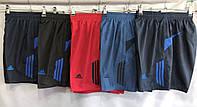Шорты мужские плащевые Adidas размер батал 50-58, цвета миксом