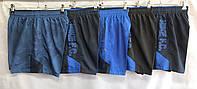 Шорты мужские плащевые Nike размер батал 50-58, цвета миксом