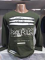 Реглан чоловічий трикотажний з прорізами PARIS норма розміри 44-50, колір хакі