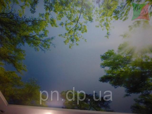 Фотопечать на натяжном потолке 3