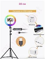 Кільцева світлодіодна лампа кольорова (мультиколор) RGB MJ26 26 см і штатив 2 метри