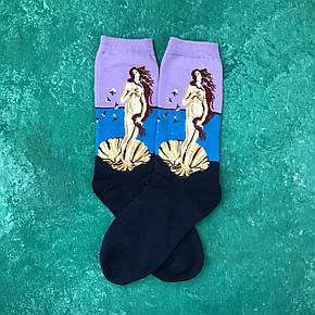 Шкарпетки Високі Жіночі Чоловічі City-A Our Tanks Картини Народження Венери (Боттічеллі), фото 2