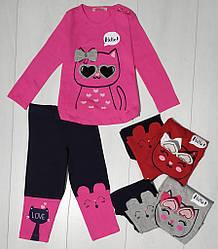 Комплект для девочки демисезонный, футболка длинный рукав+лосины (Котик), Breeze (размер 104)