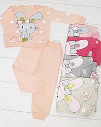 Комплект демисезонный для девочки:футболка длинный рукав+штаны, (рисунок Зайка), Breeze (размер 104)