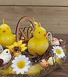 Пасхальна, великодня композиція з курчатами зі свічками на стіл., фото 3