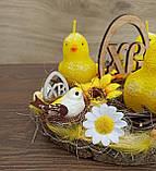 Пасхальна, великодня композиція з курчатами зі свічками на стіл., фото 9