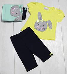 Комплект летний для девочки.(футболка короткий рукав+бриджи),аппликация Зайчик,Barmy girls (размер 80)