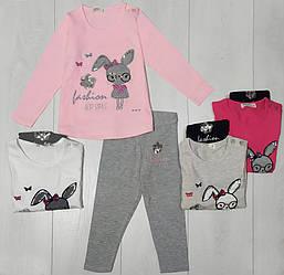 Комплект для девочки демисезонный, футболка длинный рукав+лосины (Заяц в очках), Breeze (размер 104)