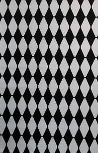 Ковер современный ALMINA 126702 1,6Х2,3 Черный с белым прямоугольник