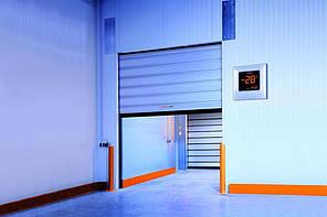 Ворота для морозильних камер EFA-SST® TK-100 (3000 х 3000 мм)