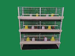 Клетка для содержания бройлеров трехэтажная.ВИДЕО