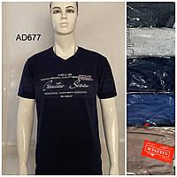 Мужская трикотажная футболка Creative Series размер батальный 54-60, цвета миксом