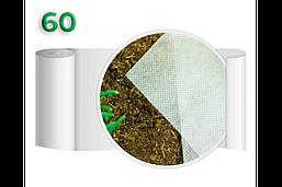 Агроволокно 60 Белое (1,6x100м)