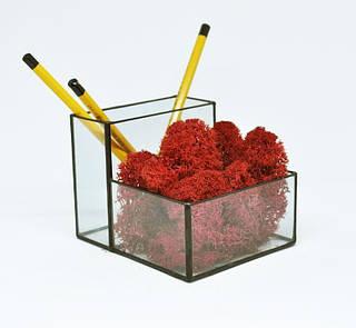 Стеклянный Флорариум кашпо Моссариум органайзер со стабилизированным красным  мхом   /декор для дома и офиса