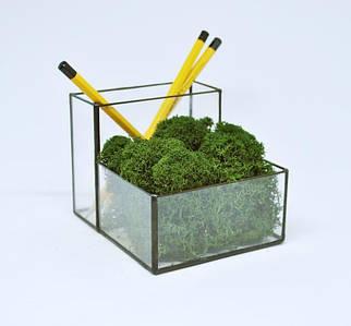 Стеклянный Флорариум кашпо органайзер со стабилизированным зеленым мхом /декор для дома и офиса/ декор из мха