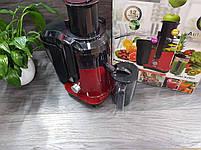 Соковыжималка DSP KJ-3031 для овощей и фруктов 2л 700W, фото 4