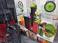 Соковыжималка DSP KJ-3031 для овощей и фруктов 2л 700W, фото 6