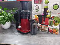 Соковыжималка DSP KJ-3031 для овощей и фруктов 2л 700W, фото 7