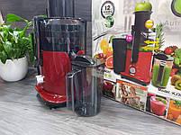 Соковыжималка DSP KJ-3031 для овощей и фруктов 2л 700W, фото 8