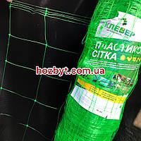 Сетка шпалерная для огурцов, 1,7х50м, ячейка 15х15см. Огуречная сетка