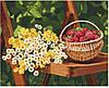 КНО 5560 Літні дари